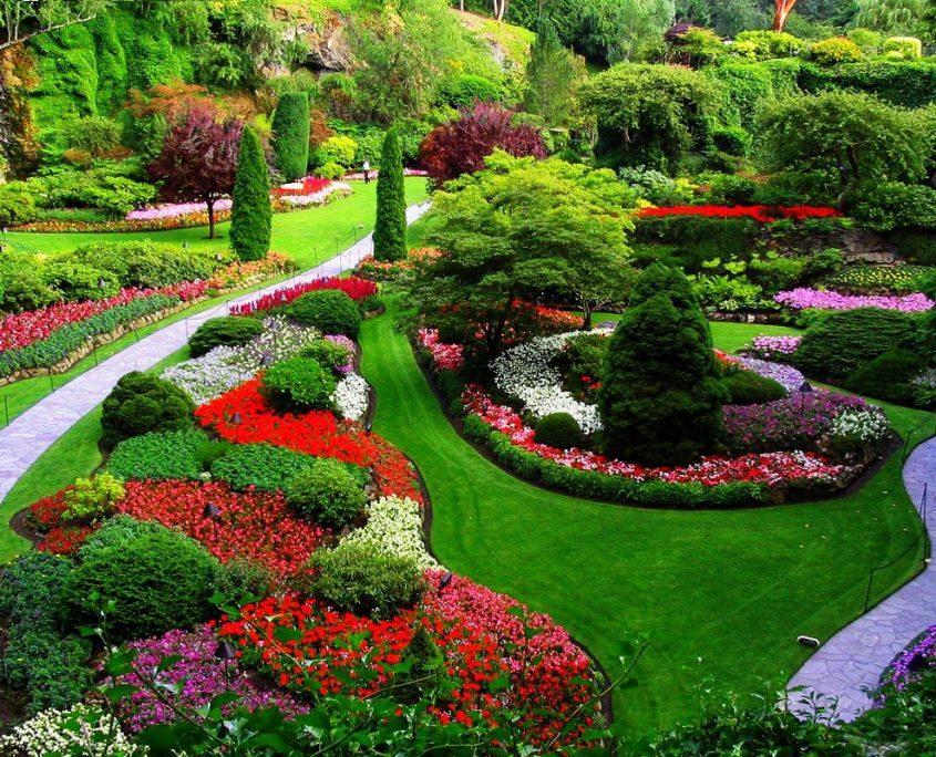 Mantenimiento de jardines cantabria mantenimiento de for Jardineria cantabria